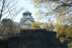 Osaka Castle with cherry blossom Royalty Free Stock Image