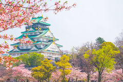 Osaka castle with cherry blossom. Japanese spring beautiful scen Royalty Free Stock Image