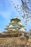 Osaka castle and cherry blossom, Osaka, Japan Stock Image