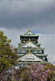 Osaka castle with the cherry blossoms Royalty Free Stock Image