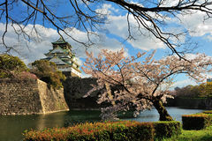 Osaka castle with the cherry blossoms Stock Images