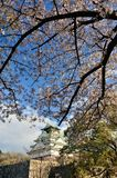 Osaka castle with the cherry blossoms Stock Photography