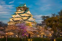 Osaka Castle with cherry trees, Japan Royalty Free Stock Photos