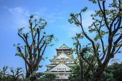 Osaka Castle en Osaka, Japón Fotografía de archivo
