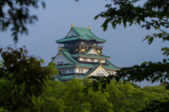 Osaka Castle framed by trees Stock Photography