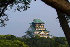 Osaka Castle framed by trees Stock Photos