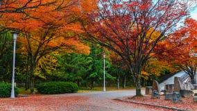 Osaka Castle garden in autumn Stock Image