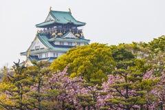 Osaka Castle i Japan under den körsbärsröda blomningen Arkivfoto