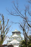 Osaka Castle i vintern med klar himmel Osaka, Japan Royaltyfria Bilder