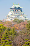 Osaka castle Japan Royalty Free Stock Image