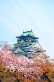Osaka Castle, Japan. Cherry blossom in Osaka castle, Osaka, Japan Stock Images