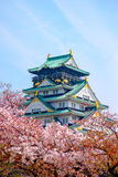 Osaka Castle, Japan. Cherry blossom in Osaka castle, Osaka, Japan Royalty Free Stock Photography