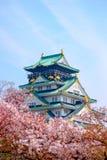 Osaka Castle, Japan. Cherry blossom in Osaka castle, Osaka, Japan Royalty Free Stock Images