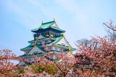 Osaka Castle, Japan. Cherry blossom in Osaka castle, Osaka, Japan Royalty Free Stock Image