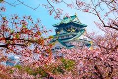 Osaka Castle, Japan. Cherry blossom in Osaka castle, Osaka, Japan Stock Image