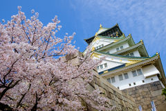 Osaka castle Japan. Osaka castle with cherry blossom Stock Image