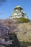 Osaka Castle in Japan. During cherry blossom season in spring Stock Photo