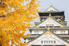 Osaka Castle with in Japan Royalty Free Stock Image