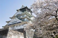 OSAKA CASTLE, JAPAN. A shot of Osaka Castle during Sakura, Cherry blossom Season Royalty Free Stock Photos