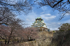Osaka castle in japan Stock Photography