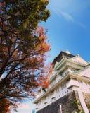 Osaka Castle lokaliserade i Osaka, Japan fotografering för bildbyråer