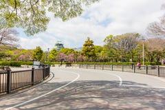 Osaka Castle mit Sakura Forest Stockfotografie
