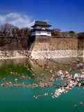 Osaka Castle Moat Royalty Free Stock Images