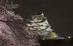 Osaka Castle Night View. World famous Osaka Castle at night with cherry blossom surroundings Stock Images