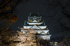 Osaka Castle Night View. World famous Osaka Castle at night with cherry blossom surroundings Stock Photo