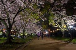 Osaka Castle Ninomaru Park Arkivbilder