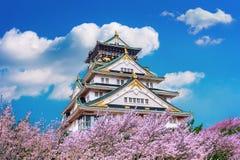 Osaka Castle och körsbärsröd blomning i vår Sakura säsonger i Osaka, Japan royaltyfria foton