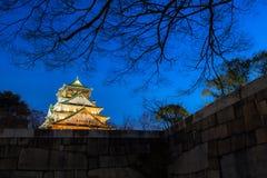 Osaka Castle a Osaka Fotografie Stock Libere da Diritti