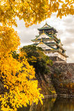Osaka Castle in Osaka, Japan. Osaka Castle in Osaka with autumn leaves. Japan Royalty Free Stock Photography