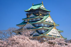 Osaka castle, Osaka, Japan. Osaka castle in cherry blossom season, Osaka, Japan Royalty Free Stock Photos