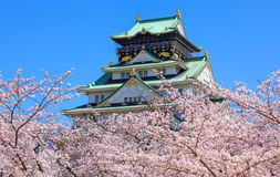Osaka castle, Osaka, Japan. Osaka castle in cherry blossom season, Osaka, Japan Royalty Free Stock Photography