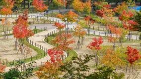 Osaka Castle Park in Osaka, Japan Royalty Free Stock Images
