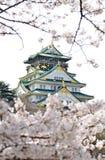 Osaka Castle a Sakura Fotografie Stock
