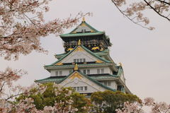Osaka Castle Sakura. Osaka castle with cherry blossom. Japanese spring beautiful scene Stock Images