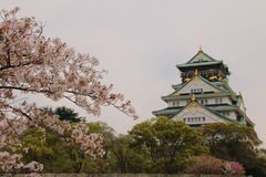 Osaka Castle Sakura. Osaka castle with cherry blossom. Japanese spring beautiful scene Royalty Free Stock Images