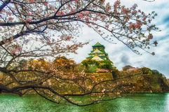 Osaka Castle Sakura Royalty Free Stock Photos