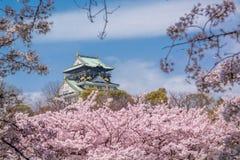 Osaka Castle. During sakura season in Japan royalty free stock images