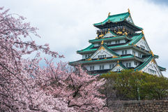 Osaka Castle. In spring with cherry blossom royalty free stock photo