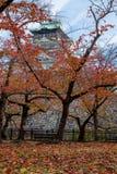 Osaka castle tower in japan, in Autumn stock photos