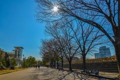 Osaka City Fotografia Stock