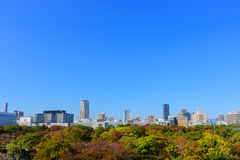 Osaka City Fotos de Stock Royalty Free