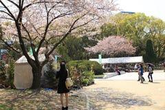 Osaka city, Japan Royalty Free Stock Images
