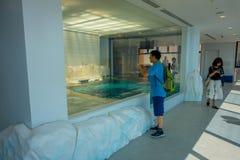 OSAKA, JAPÃO - 18 DE JULHO DE 2017: Homem não identificado que aprecia e que toma imagens em uma área moderna no aquário de Kiyuk Fotografia de Stock Royalty Free