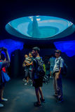 OSAKA, JAPÓN - 18 DE JULIO DE 2017: Dolphing en Osaka Aquarium Kaiyukan Ring del acuario del fuego, uno del público más grande Fotos de archivo libres de regalías