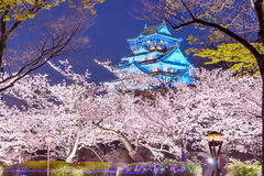 Osaka, Japan Castle. Osaka, Japan at Osaka, Castle with cherry blossoms Stock Photos