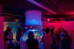 OSAKA, JAPAN - JULY 18, 2017: Unidentified people looking colorful coral reefs and fishes inside of a small fishbowl in Stock Photo